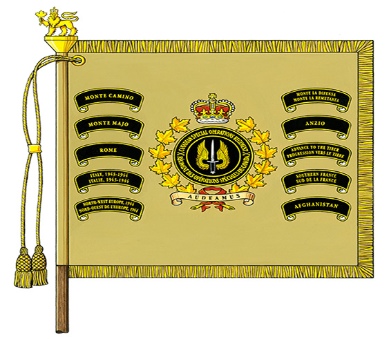 Special Operations Command Colours